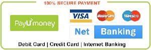 payu money payment gateway